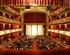 Accesibilidad para personas con discapacidad visual en la Red Municipal de Teatros y Teatro Principal Antzokia